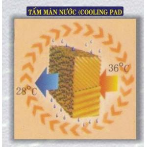 Tấm màn nước (Cooling Pad)